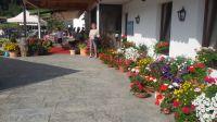 Blumenschmuck_vor_Berghotel_
